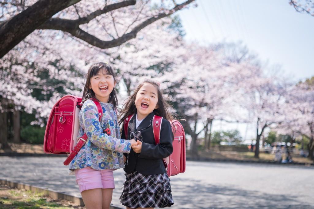 入学式記念写真 桜バック